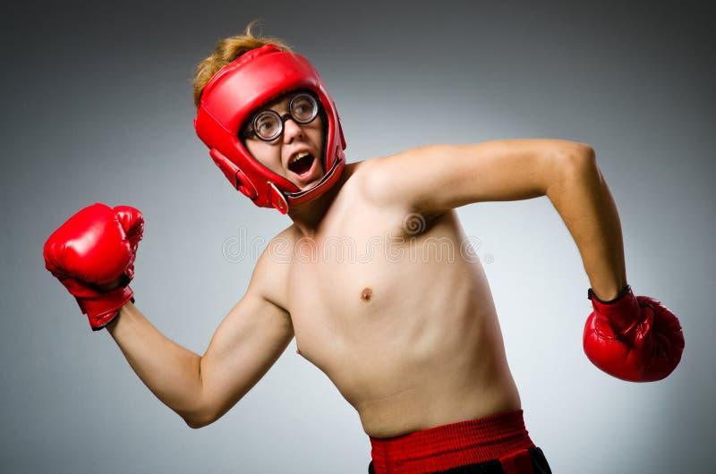 Смешной боксер против стоковые фото