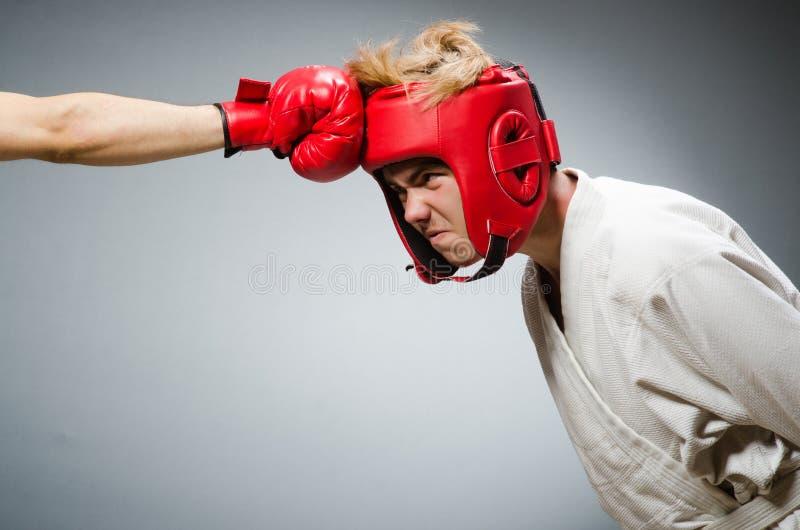 Смешной боксер против стоковые изображения rf