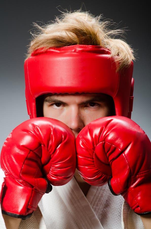 Смешной боксер против стоковое изображение rf