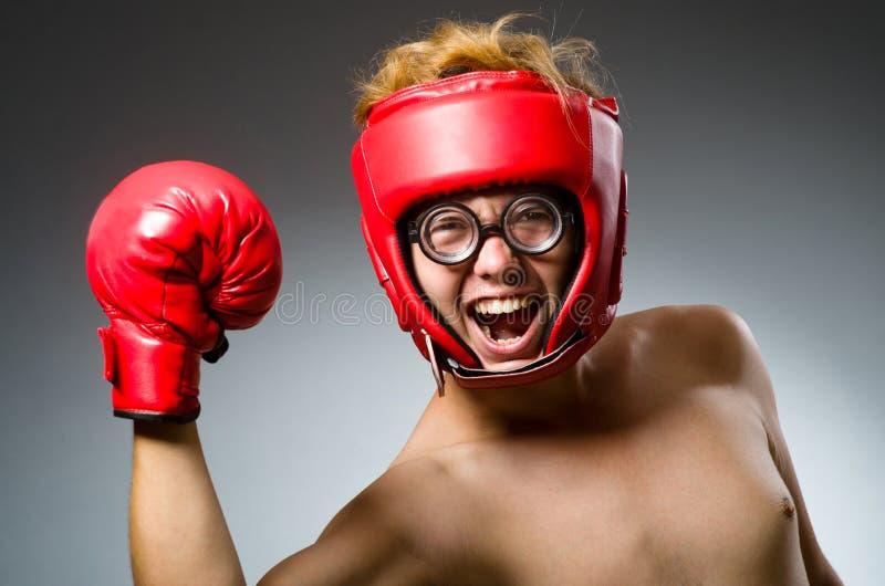 Смешной боксер против стоковые фотографии rf