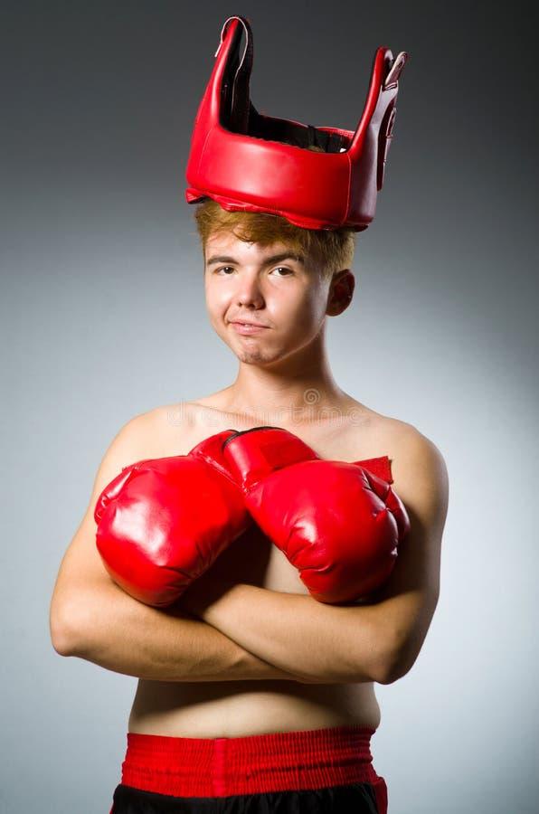 Смешной боксер против стоковое изображение