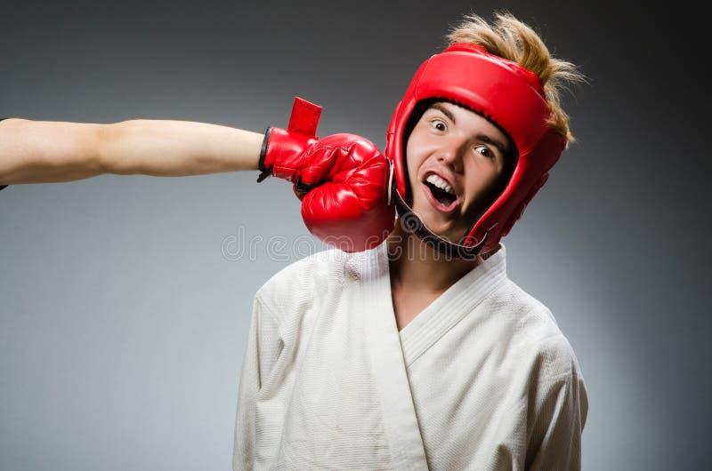 Смешной боксер против стоковая фотография rf