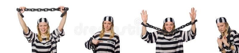 Смешной воспитанник тюрьмы в концепции стоковые фото