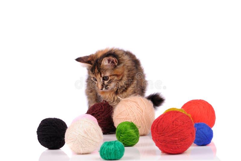 смешной кот с рождественскими игрушками, изолированными на белом стоковые фотографии rf