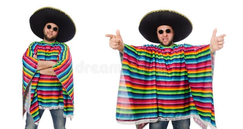 Смешной мексиканец изолированный на белизне стоковое изображение rf