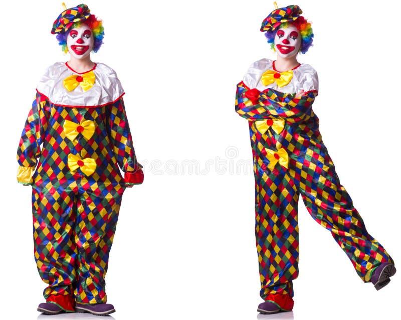 Смешной мужской клоун изолированный на белизне стоковые изображения rf