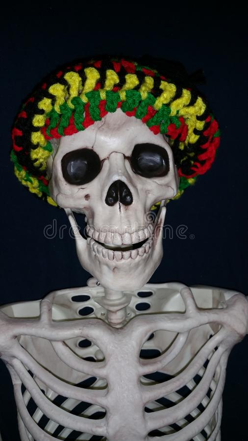 Смешной скелет нося шляпу стоковое фото rf