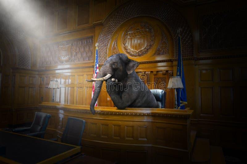 Смешной сюрреалистический судья слона, юрист, зал судебных заседаний, закон стоковое изображение
