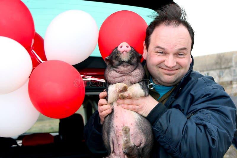 Смешной усмехаясь человек держит небольшую свинью в его руках стоковое изображение