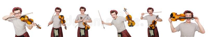 Смешной scotsman с скрипкой на белизне стоковое фото rf