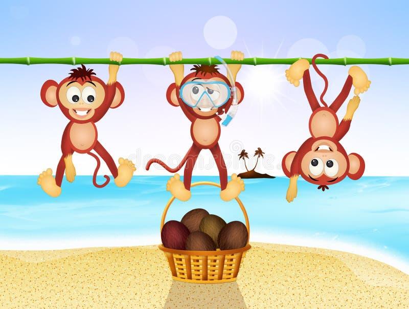 Смешные обезьяны на пляже бесплатная иллюстрация