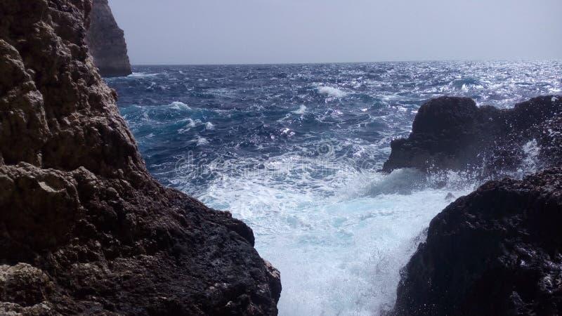 смещение удя среднеземноморскую сетчатую туну моря стоковое фото