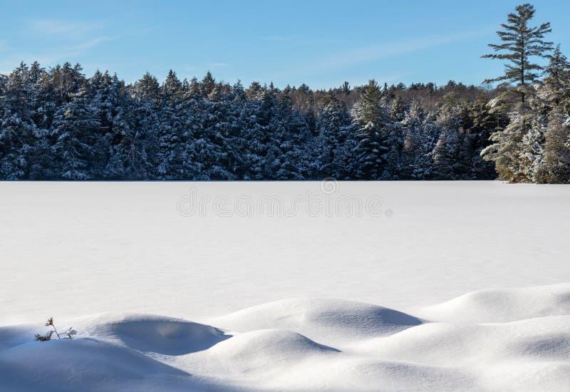 Смещения снега на замороженное озеро черепаха стоковое фото