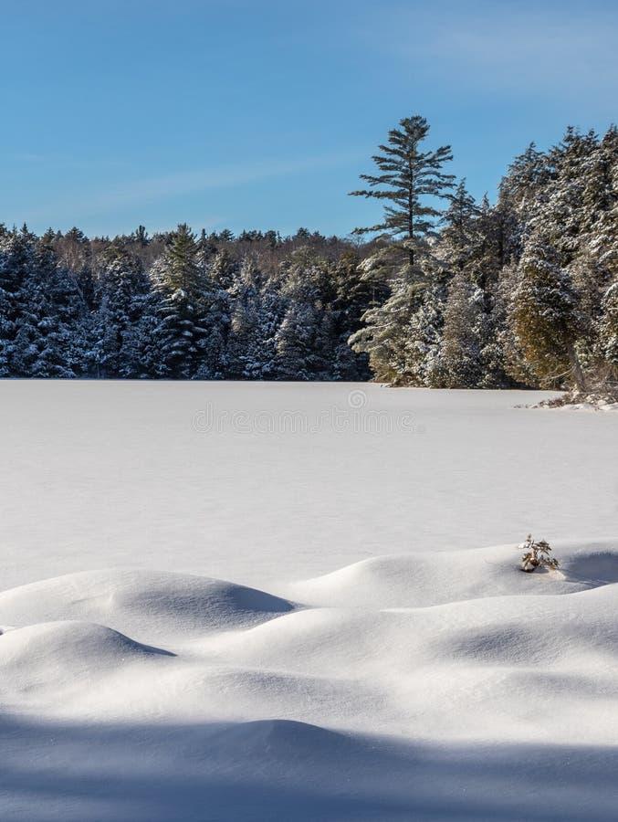 Смещения снега на замороженное озеро черепаха стоковая фотография