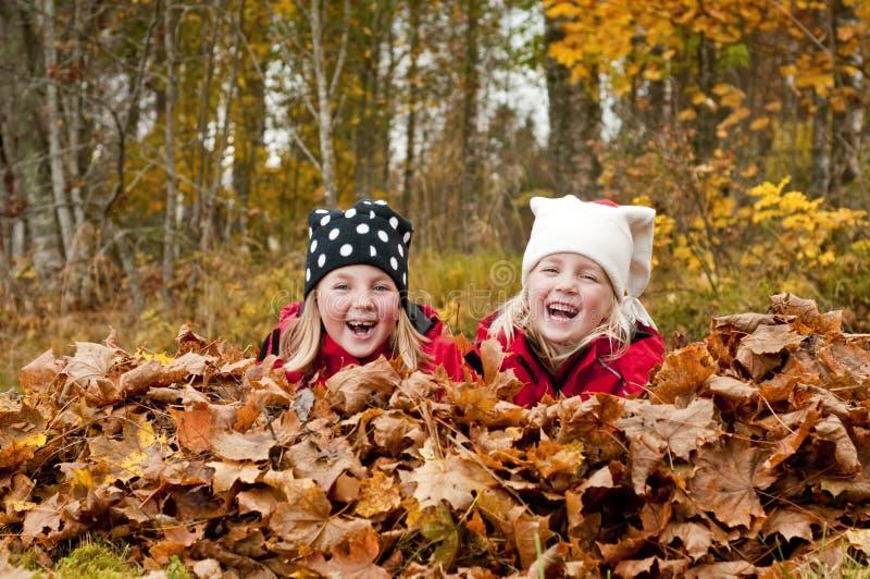 смеяться над детей стоковые фотографии rf