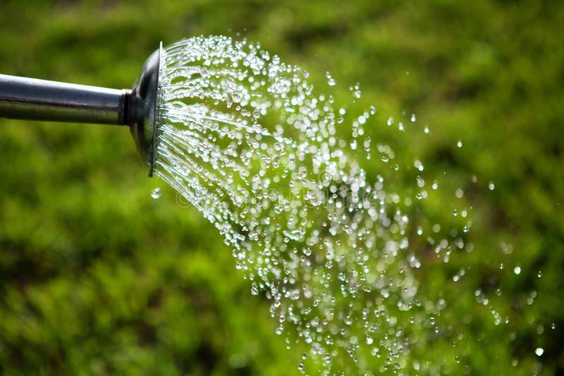 смогите засевать металл травой к используемый мочить воды стоковая фотография