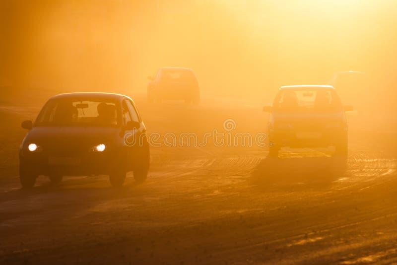 Смог от лесных пожаров стоковое изображение rf