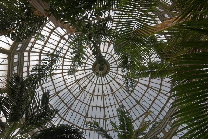 Смотреть вверх на крыше консерватории Como стоковые изображения