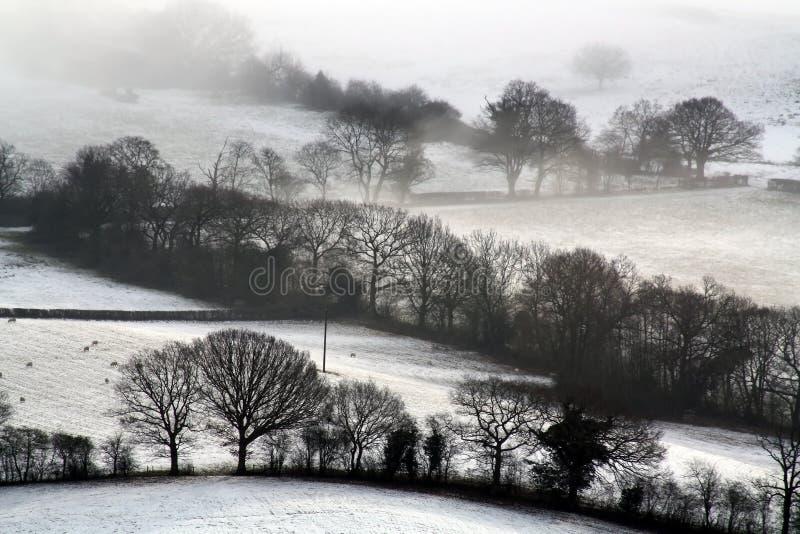 Смотреть вниз на снеге покрыл английские сельскохозяйственные угодья С деревьями silhouetted на холоде, зимы, туманный день стоковое изображение rf