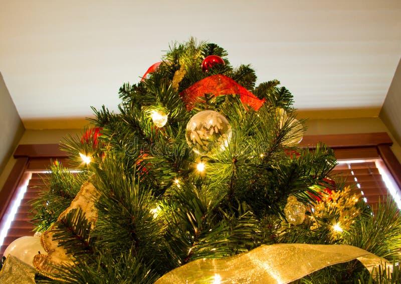 Смотреть до пик рождественской елки стоковое фото rf