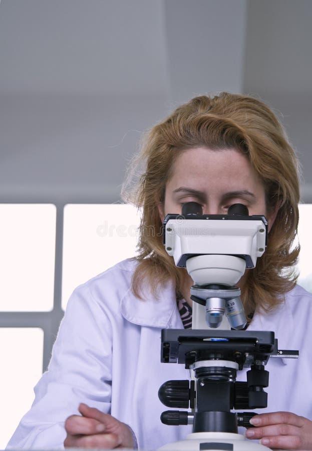 смотреть микроскоп стоковая фотография rf
