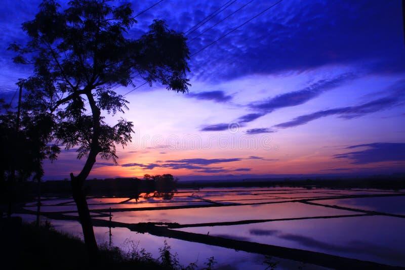 Смотреть на новый день от сельского хозяйства соли в Kaliori стоковое изображение rf