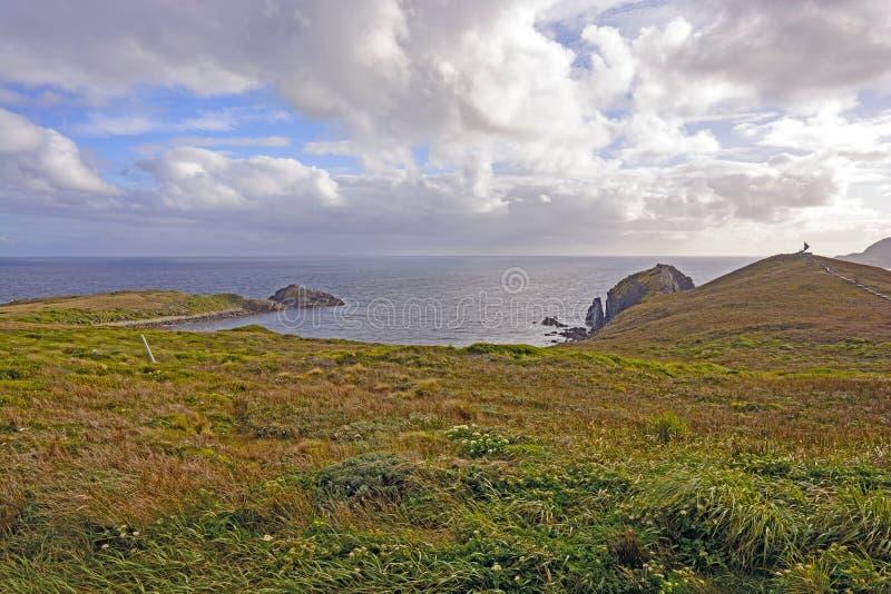 Смотреть южный к открытому океану стоковое фото