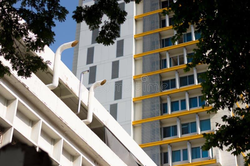 Смотрящ вверх старое и современное здание через сень дерева на университетском кампусе, Бангкок, Таиланд стоковые фото
