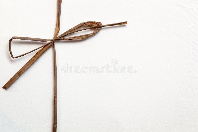 Смычок на белой бумаге стоковая фотография
