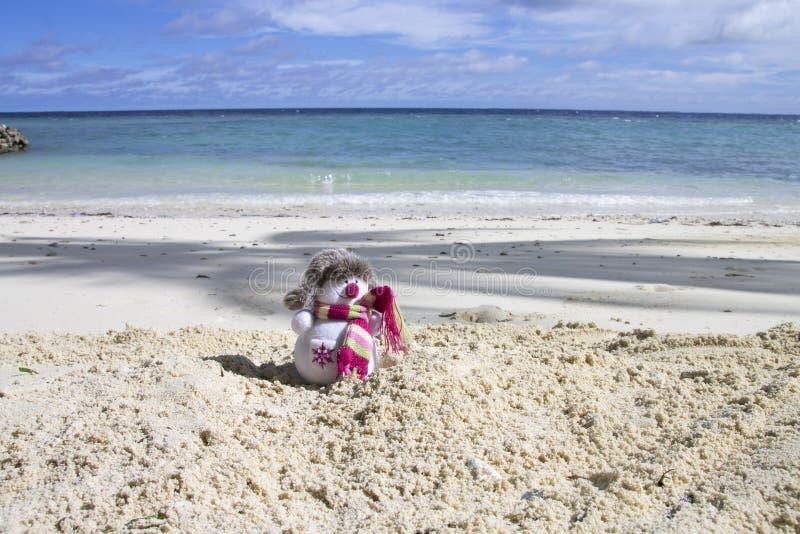 Снеговик в Мальдивах стоковое фото rf
