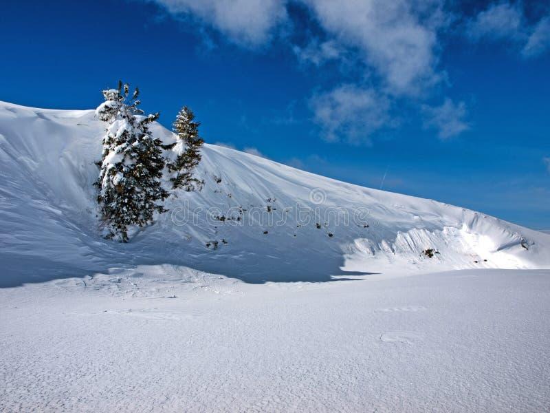 Снег лавины стоковое фото rf