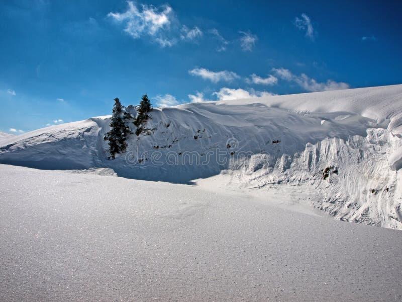 Снег лавины стоковая фотография rf