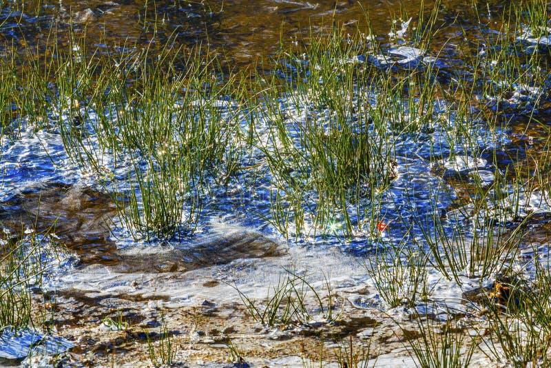 Снег Вашингтон зимы Sparkles диамантов реки Wenatchee стоковое фото rf
