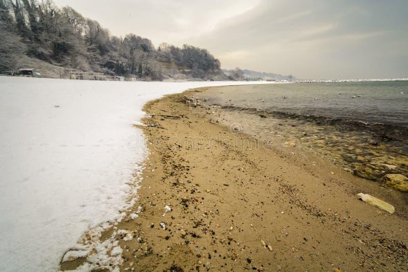 снег в пляже стоковое фото rf