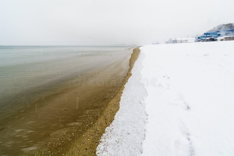 снег в пляже стоковые изображения rf