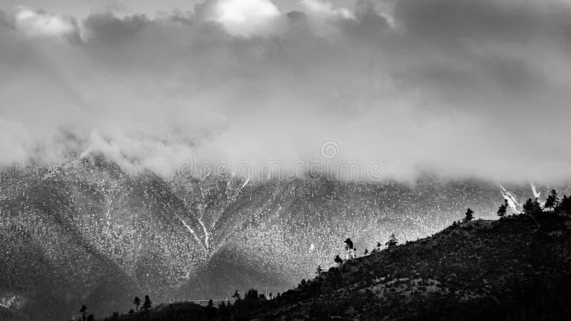 Снег зимы с головой Будды стоковые фото