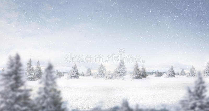 Снег и панорама ландшафта зимы стоковые фотографии rf
