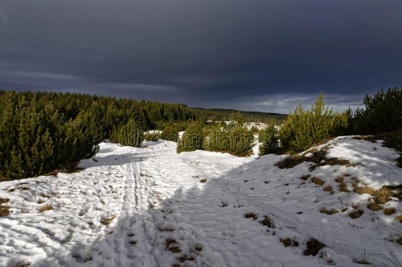 Снег на грязной улице стоковые изображения rf
