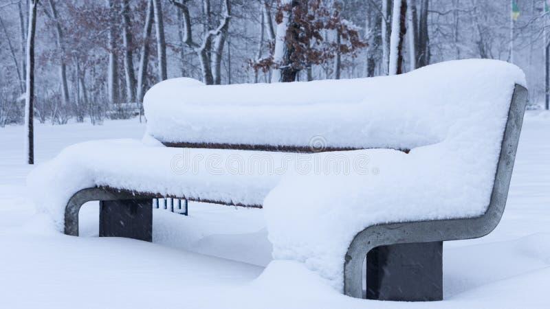 Снег на стенде в парке зимы стоковая фотография rf