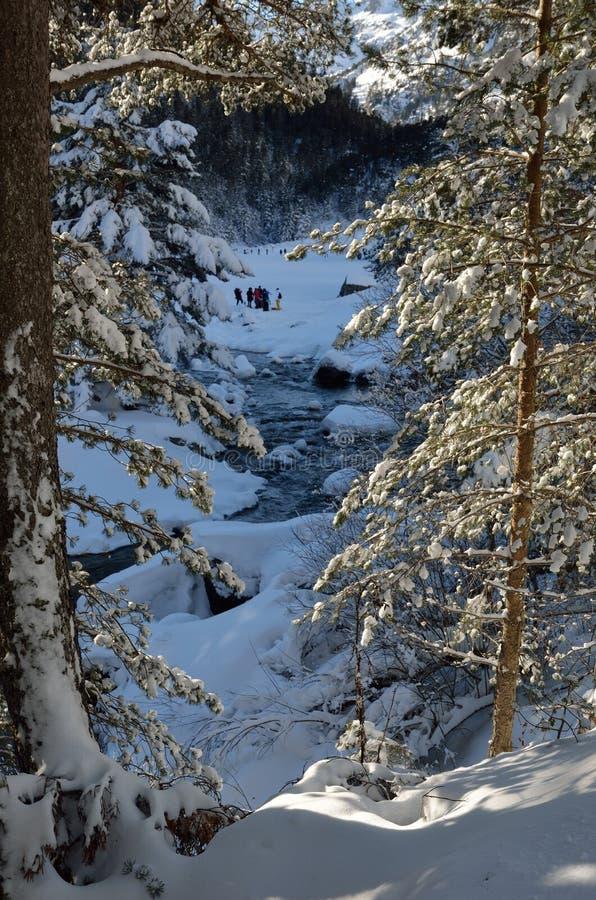 Снег-обувать в горах зимы стоковое фото
