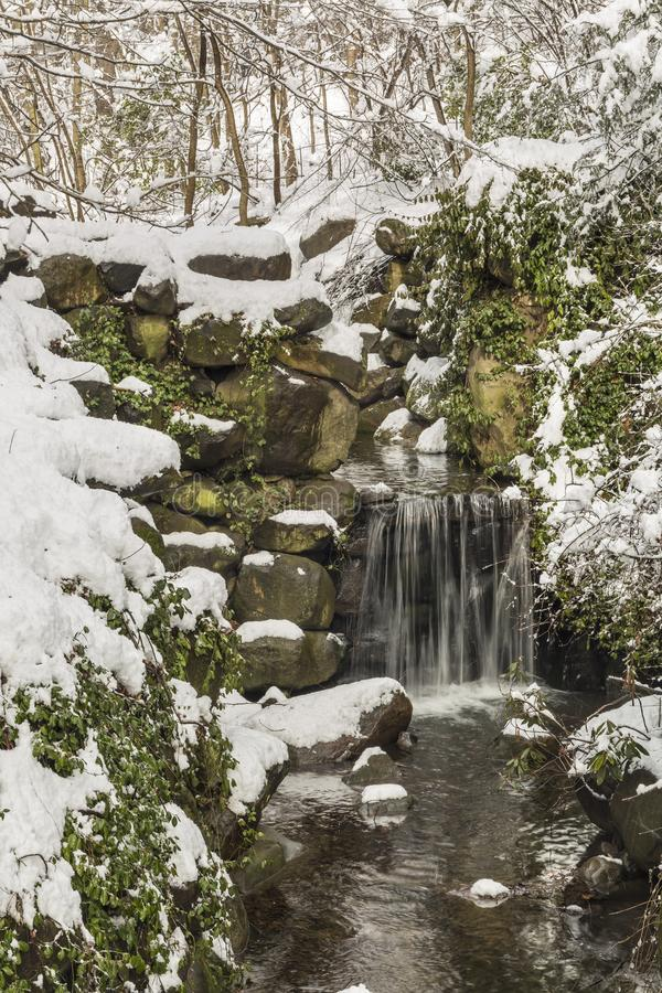 Снег падений и весны Ambergill стоковые фото