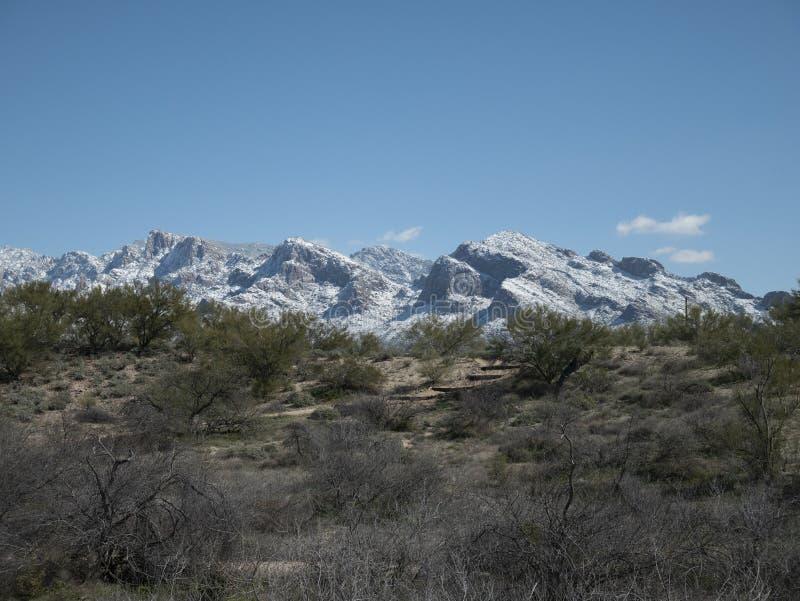 Снег покрыл горы Санта Каталины от парка майны Ламбера стоковые фото