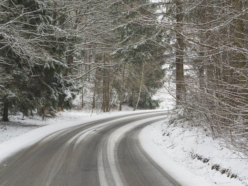 Снег покрыл кривую дороги асфальта в лесе зимы стоковое изображение