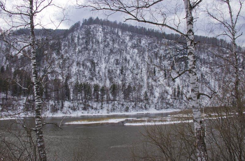 Снег покрыл обваловку реки стоковое изображение rf