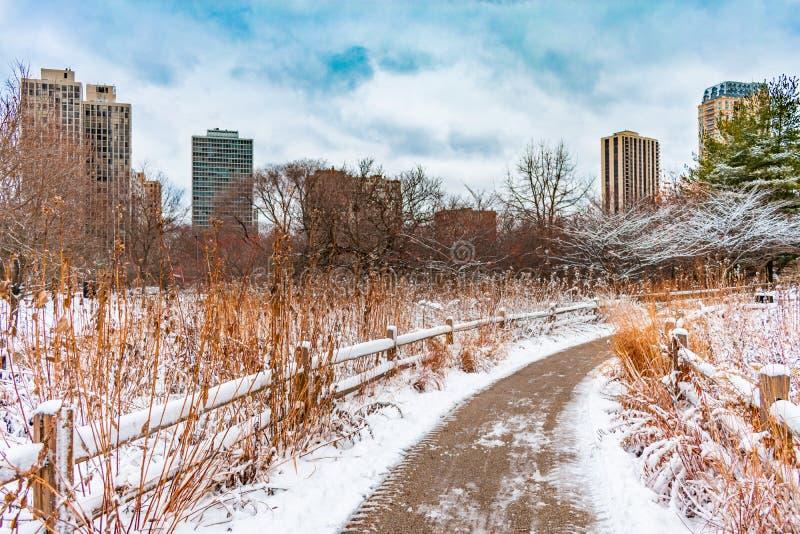 Снег покрыл обнесенный забором след северным прудом в Lincoln Park Чикаго стоковое фото