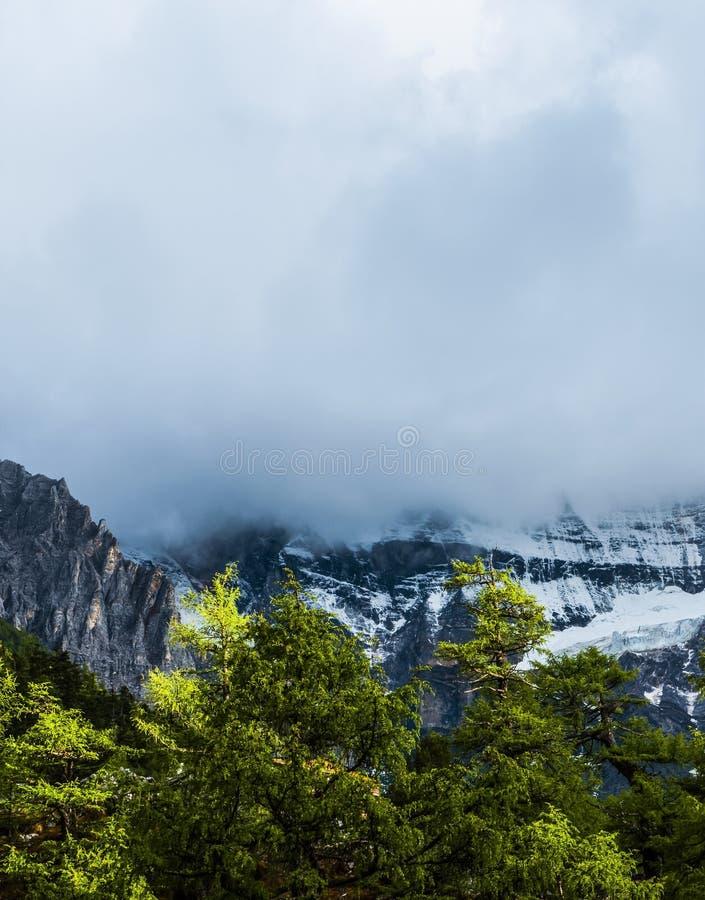 Снег покрытый облаками стоковые изображения rf