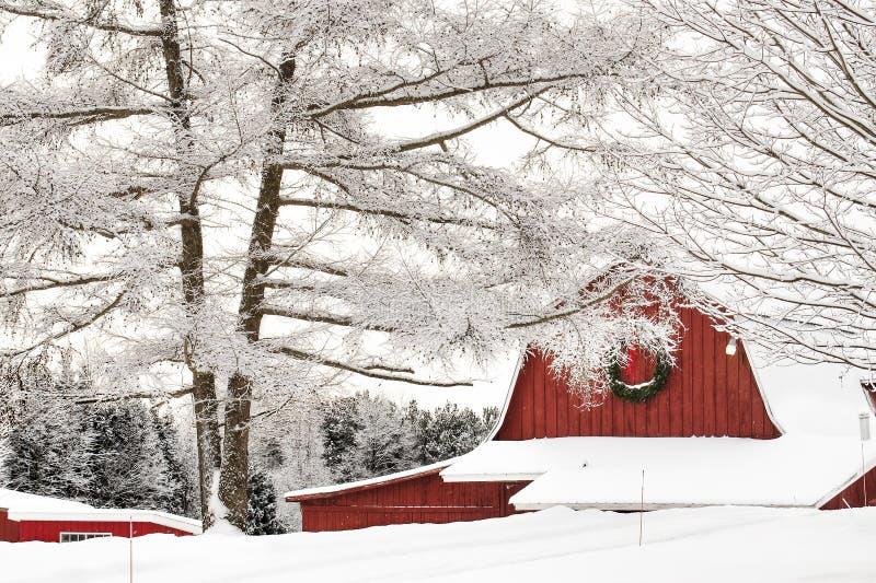 Снег покрыл амбар и деревья стоковая фотография