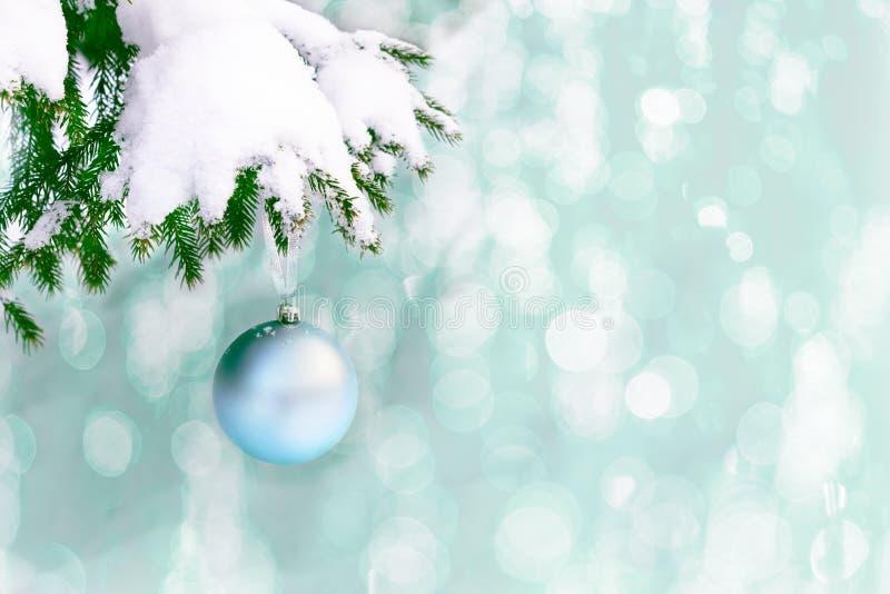 Снег покрыл ветвь ели с бледным - голубой орнамент рождества стоковое фото rf