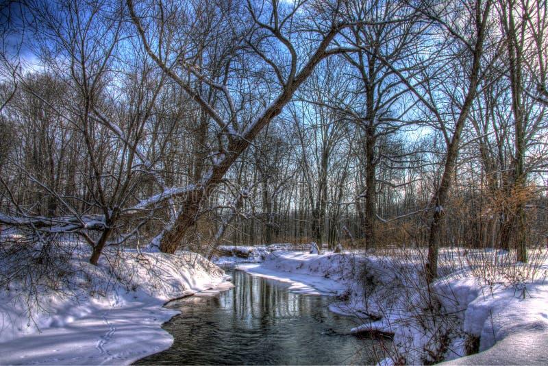 Снег покрыл заводь в древесинах стоковые фотографии rf