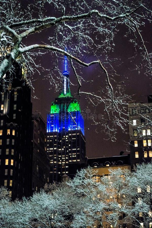 Снег светлое NYC стоковые изображения